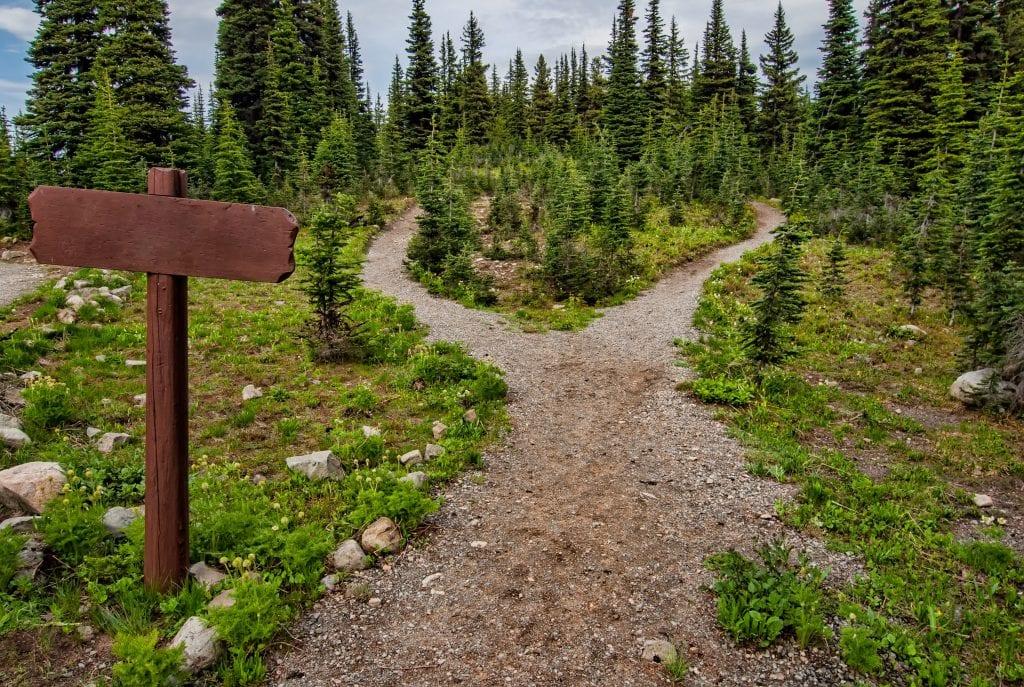 wilderness-trail-short-cut
